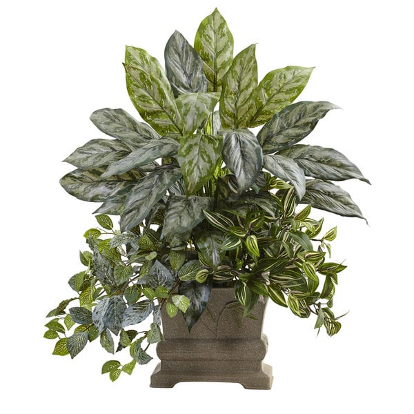 28-inch Mixed Silver Queen, Wandering Jew & Fittonia w/Planter