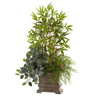 38-inch Mixed Mini Bamboo, Fittonia & Springeri w/Planter