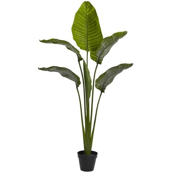 64-inch Travellers Palm Tree UV Resistant (Indoor/Outdoor)