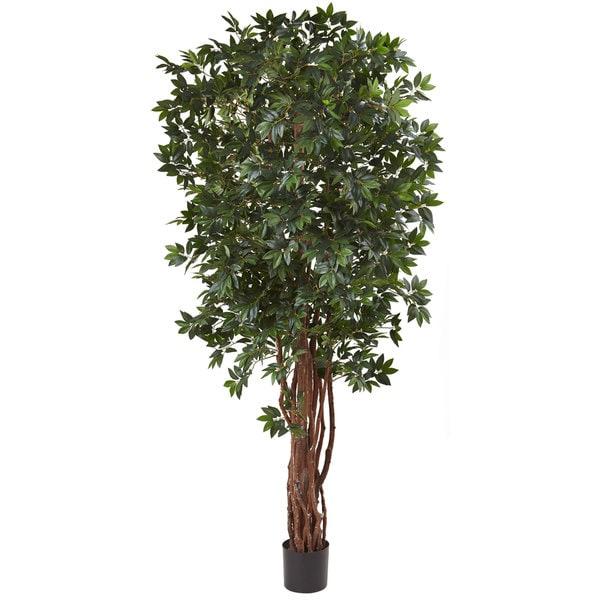 7.5-foot Lychee Silk Tree