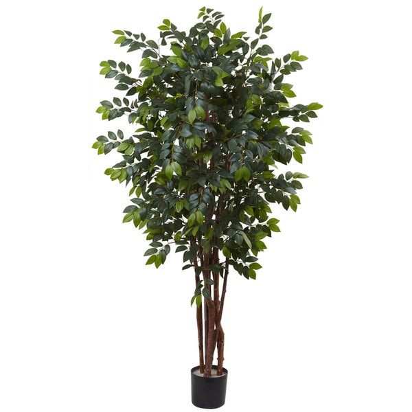 7-foot Sakaki Silk Tree