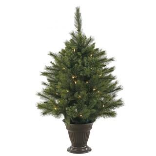 "3.5' x 28"" Cashmere Pine Tree with 50 Warm White Italian Lights"