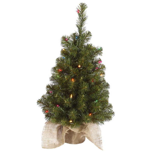 "30"" x 16"" Felton Pine Tree with 50 Multi-Colored Lights and 139 Tips"