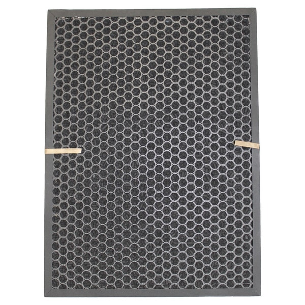 Air Filter and Carbon Filter Kit Fits Rabbit BioGS / BioGP SPA-421A and SPA-582A 17565539