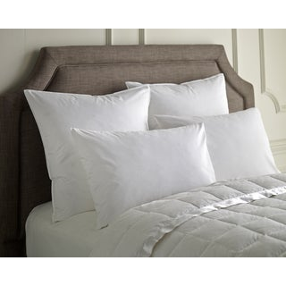 Cotton Down Blended Hybrid Pillow (Set of 2)
