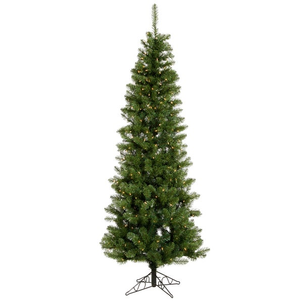 "9.5' x 44"" Salem Pencil Pine Tree with 450 LED Frosted Italian Lights"