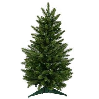 """24"""" x 16"""" Frasier Fir Tree with 90 Tips"""