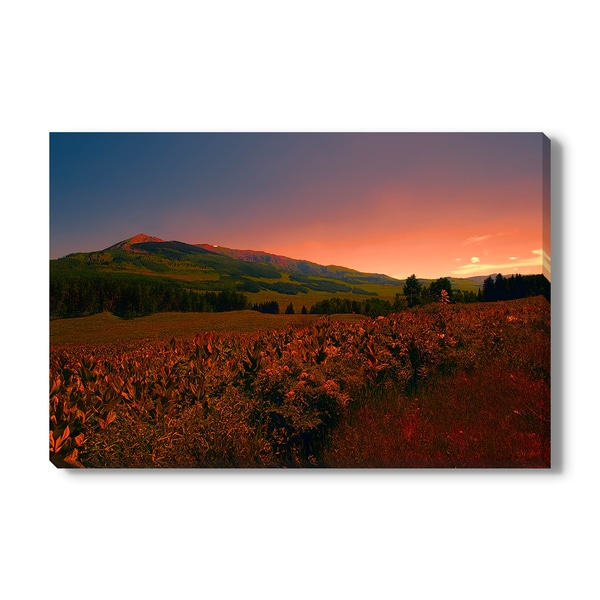 A flower filled field, bathed in reddish light from the sun setting behind a mountain Print on Canvas Gallery Wrap
