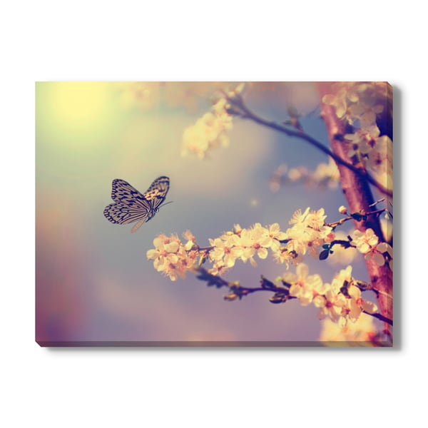 Butterfly and cherry blossom Print on Canvas Gallery Wrap