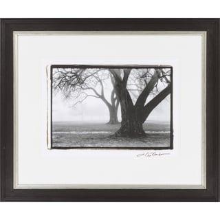 "Trees Kelsey Rectangular Framed Photography 26"" x 22"""