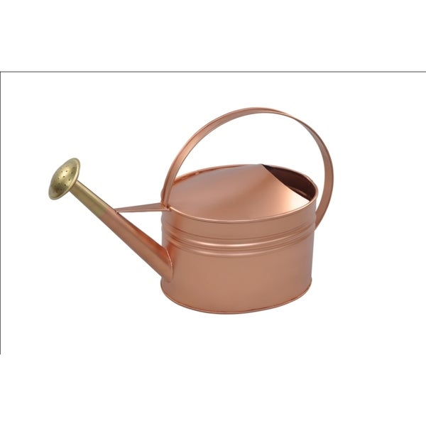 Alliyah Handmade Copper Watering Galvanized Can