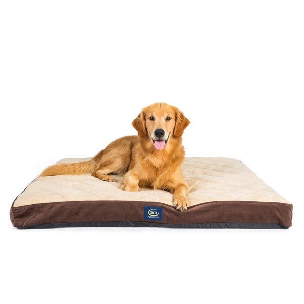 Serta Orthopedic Quilted Pillowtop Pet Bed (As Is Item)
