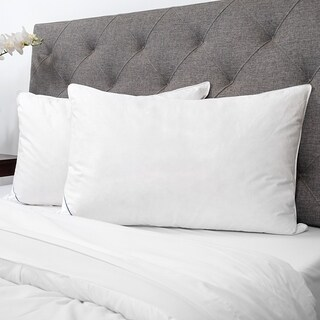 Sweet Home Collection Luxury Natural Down & Feather Bed Pillows (Set of 2)