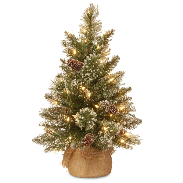 2 ft. Glittery Bristle Pine Tree with Battery Operated Warm White LED Lights