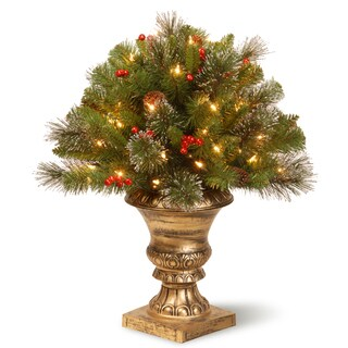 """24"""" Crestwood Spruce Porch Bush with Clear Lights"""