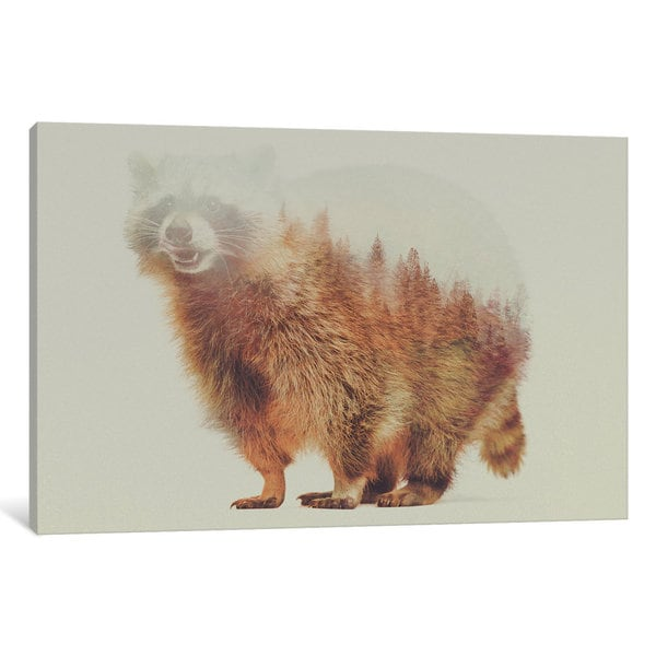 iCanvas Raccoon by Andreas Lie Canvas Print