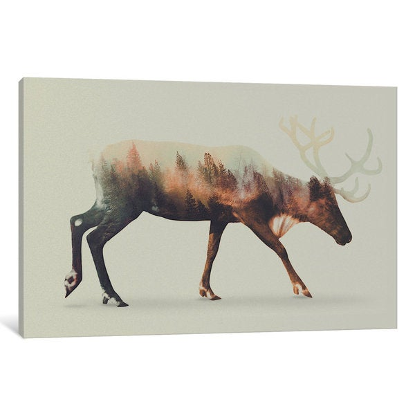 iCanvas Reindeer by Andreas Lie Canvas Print