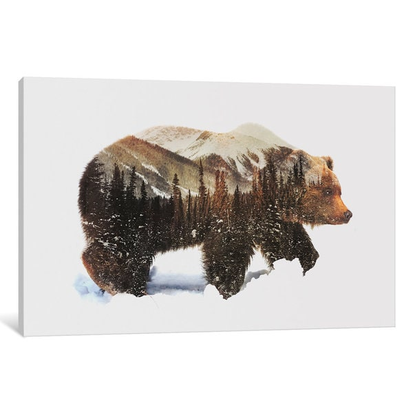 iCanvas Arctic Grizzly Bear by Andreas Lie Canvas Print