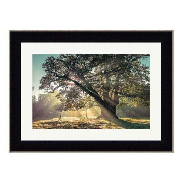 Framed Art Print 50 x 38 By Assaf Frank Breaking Through