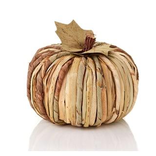 Dried Grass Pumpkin Large
