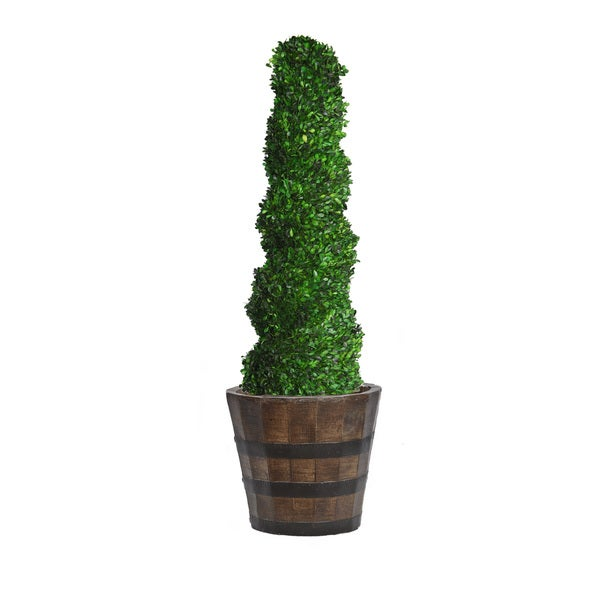 58-inch Tall Preserved Natural Spiral Boxwood Topiary in Planter