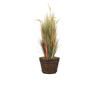 68-inch Tall Onion Grass with Cattail in Planter