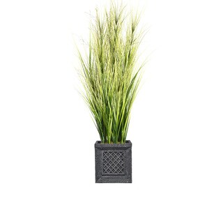 66-inch Tall Onion Grass with Twigs in Planter