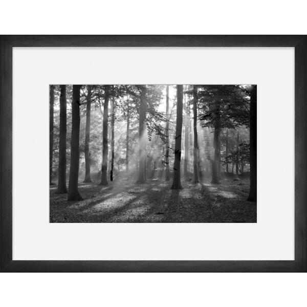 "Forest Landscapes Thalia Framed Photography 30"" x 40"""