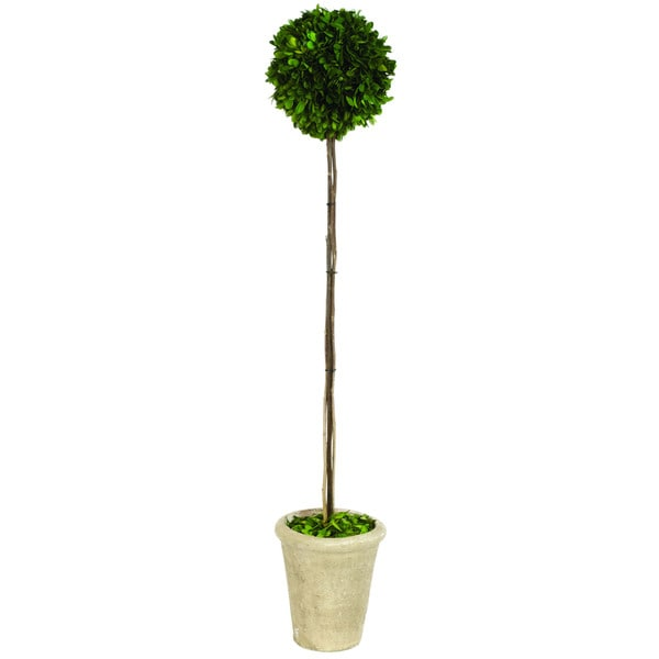 35-inch Boxwood Ball Topiary