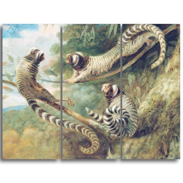 Design Art 'George Garrard - A Marmoset in Three Attitudes' Landscape Canvas Art Print