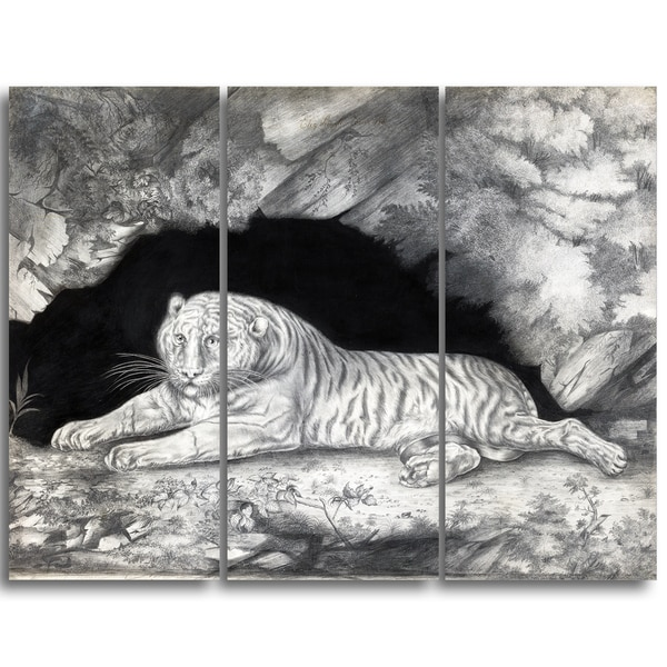 Design Art 'Elizabeth Pringle - A Tiger Lying in a Cave' Landscape Canvas Art Print