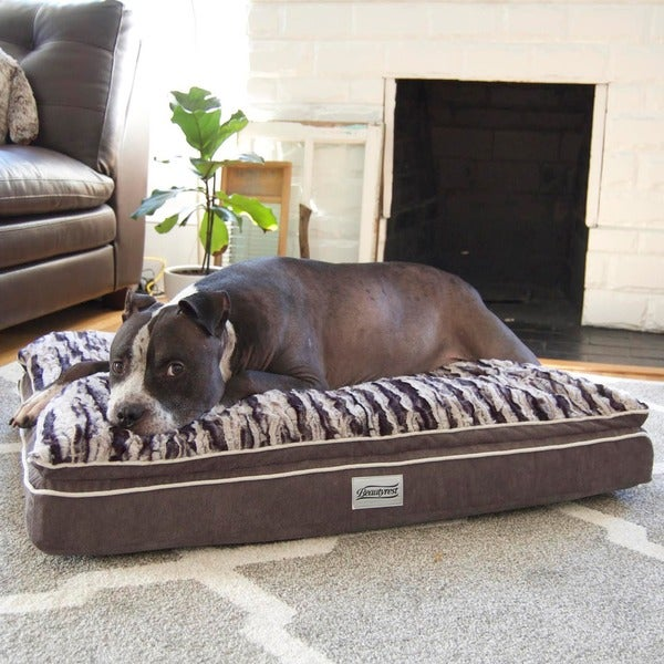 Simmons Beautyrest Luxe Mat Plus Rectangular Orthopedic Memory Foam Dog Bed