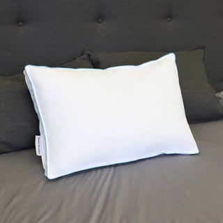 Sweet Slumber Ultra Soft Microfill and DreamCell Latex Pillow