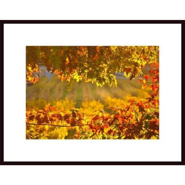 John Nakata 'Autumn Leaves' Framed Art