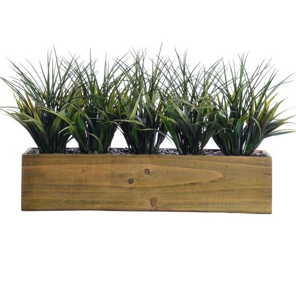 Tall Grass In Wooden Pot