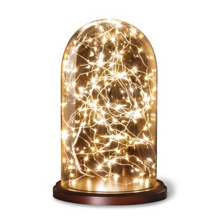 Apothecary & Company Glass Cloche with LED String Lights