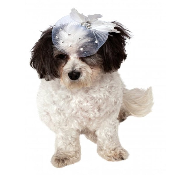 Rubies Pet Formal Hat