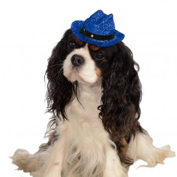 Rubies Pet Sparkle Cowboy Hat Blue