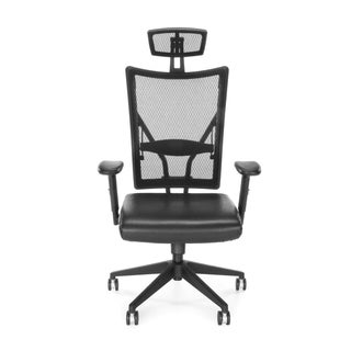 Talisto Series Executive High-Back Leather and Mesh Chair
