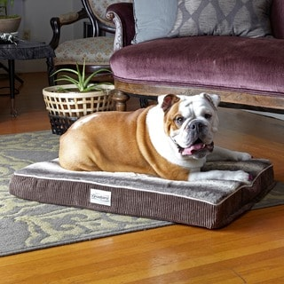 Beautyrest Memory Snooze Orthopedic Dog Bed