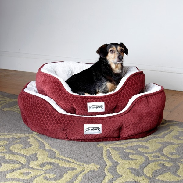 Beautyrest Subtle Seat Orthopedic Memory Foam Pet Bed