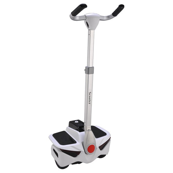 Greenway 2 Wheel Stand Scooter