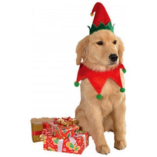 Rubies Pet Elf Set