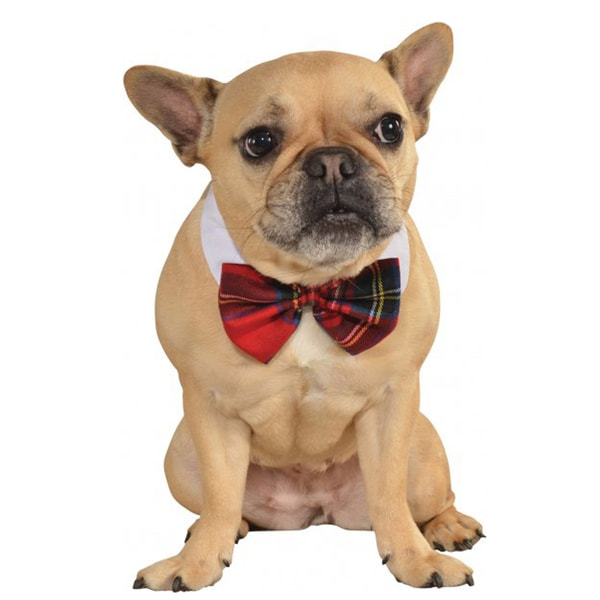 Rubies Plaid Pet Bow Tie