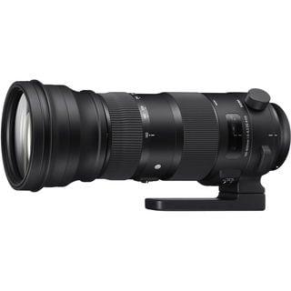 Sigma 150-600mm Sports Lens for Nikon