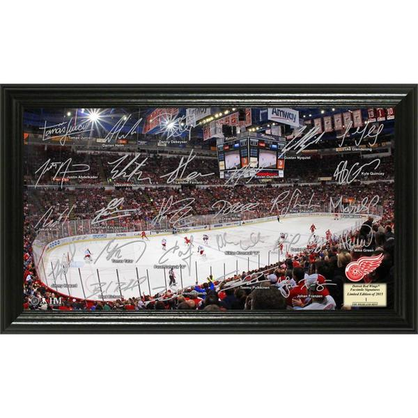 Detroit Red Wings Signature Rink 16654813