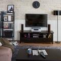 Furniture of America Robins Modern Espresso 60-inch TV Stand