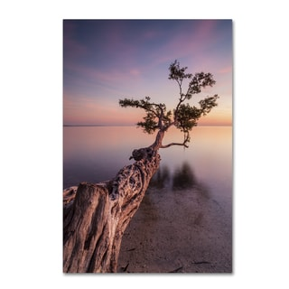 Moises Levy 'Water Tree IV' Canvas Wall Art