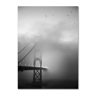 Moises Levy 'Golden Gate and Birds' Canvas Wall Art