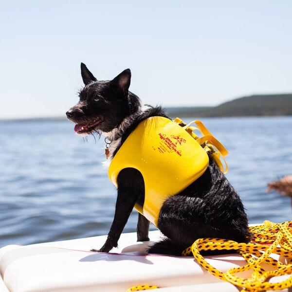 TRC Recreation Vinyl Doggie Vest